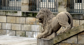 Lew z Królewskich Łazienek